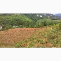 Батуми за городам Челта срочно продаётся земельный участок