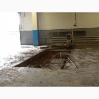 Алмазное штробление бетона, железобетона, кирпича Харьков