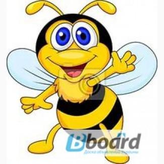 Лечение суставов пчелами в харькове скипидар применение при суставах