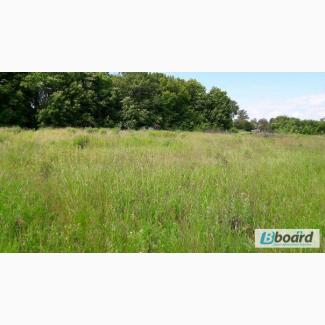Продам участок земли на Лебединской