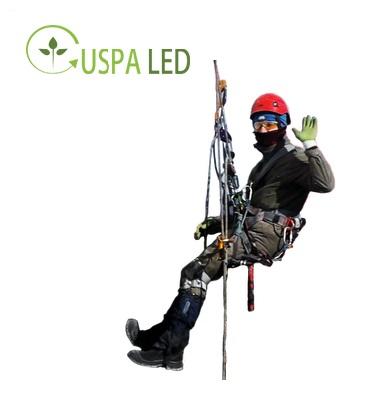 Услуги промышленных альпинистов пермь