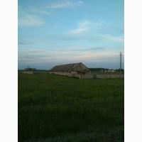 Продам землю с/х назначения, 3 гектара, Алаторка