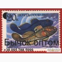 Купить бычок азовский свежемороженый крупный оптом в Керчи.
