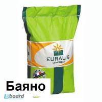 Семена подсолнечника Евралис Баяно (Euralis Bayano)