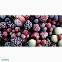 Сортировка замороженных фруктов, Польша