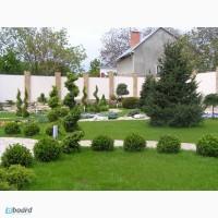 Ландшафтный дизайн, водоем, бассейн, проектирование