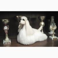 Продам Авторскую игрушку-сувенир для декора. Собачка Американский кокер спаниель