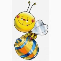 Покупаю мед в Хмельницком и Тернополе