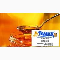 Куплю мед оптом дорого від 300 кг Миколаївська обл