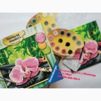 Картина по номерам, антистрес красками цветок набор для рисования