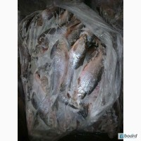 Свежемороженая речная рыба.Кременчуг