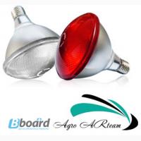 Инфракрасная лампа 175 Вт красная для обогрева животных