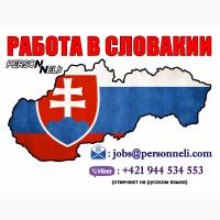 Работа в Словакии для мужчин и женщин. Официально