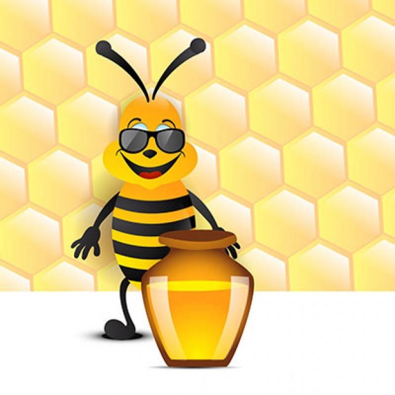 дом картинка креативные пчелки совместить