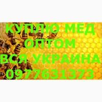 Куплю мёд по КИРОВОГРАДСКОЙ обл. и вся УКРАИНА