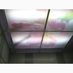 Печать на стекле (панно стеклянное с подсветкой)