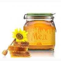 Покупаю мед в Волынской обл