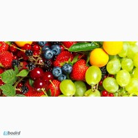 Строим овоще и фрукто хранилища