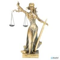 Сімейні та спадкові спори, адвокат