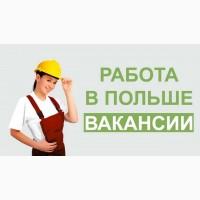 Работа и трудоустройство в Польше