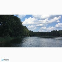 Лесные участки на берегу озера на курорте Друскининкай + ЗАО для оформления ВНЖ в ЕС