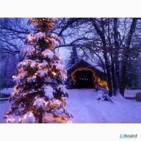 Отдых на Новый Год и Рождество 2018 года в живописном уголке