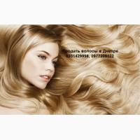 Продать волосы в Днепре. Скупка Волос в Днепре