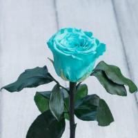 Невянущие розы в колбе Lerosh – Mini 27 см, Бирюзовая Лучший подарок к 8 марта
