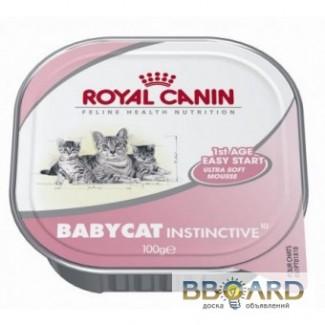 Консервы и лакомства для котов