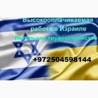 Легальная работа в Израиле. Работа за границей
