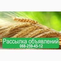 Размещение объявлений на досках Украины. Подача агро объявлений
