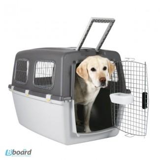 Dogs in Box. Боксы (переноски) для животных