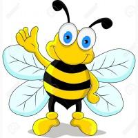 Куплю мед в Кривом Роге