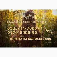 Продать волосы в Николаеве Куплю волосы в Николаеве дороже всех