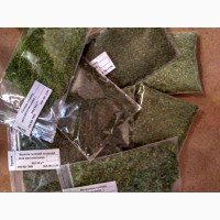 Продаємо сушені зелень та печериці власного виробництва