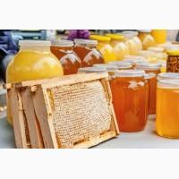 Закупаем мед по всей Украине