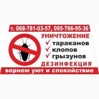 Уничтожаем тараканов, клопов, блох, грызунов Кривой Рог