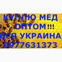 КУПЛЮ МЁД по Днепропетровской, Запорожской, Херсонской и других областях