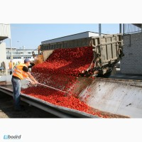 Работники на завод по производству соков в Польшу