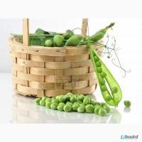 Предлагаем семена гороха в Черкасской области