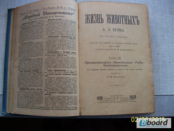 Жизнь животных брэма 1902 стоимость альбомы для погодовки россии