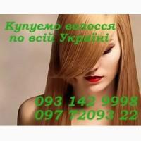 Куплю волосы по Европейским ценам
