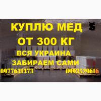 Закупка мёда оптом в ДНЕПРОПЕТРОВСКОЙ И ХЕРСОНСКОЙ обл. Забираем своим транспортом