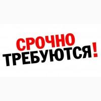Работа в Польше для Украинцев 8 часов. Бесплатные вакансии от Workbalance