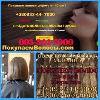 Продать волосы в Одессе Покупаем волосы