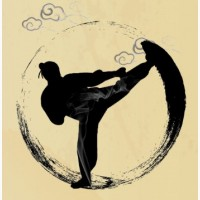 Кунг-фу Шаолинь и Винчун, фехтование, Цигун и Йога