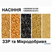 Гібриди соняшнику, кукурудзи, ЗЗР та мікродобрива