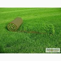 Рулонный газон высокого качества, с доставкой до Вашего участка