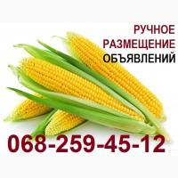 Размещение объявлений на досках Киев-Николаев. Подать объявление на агро доску