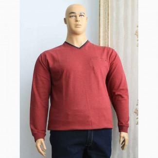 Толстовки мужские больших размеров